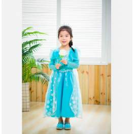 Princess Elsa Frozen Costume Dress